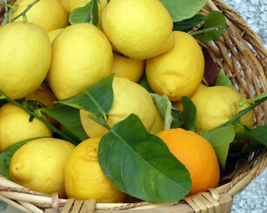 how to grow your own lemon tree small green things. Black Bedroom Furniture Sets. Home Design Ideas