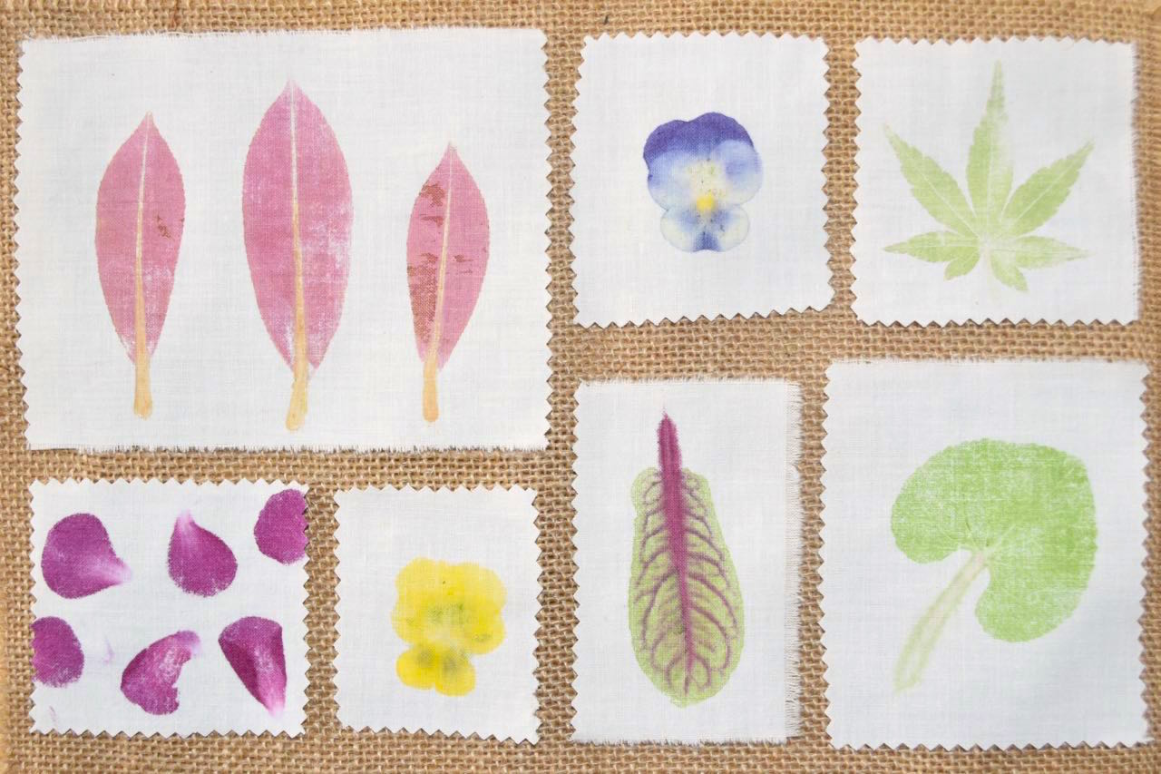 Printing With Flowers Creating Designs With Natural Dyes Using